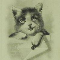 アンティークカード 猫ちゃん