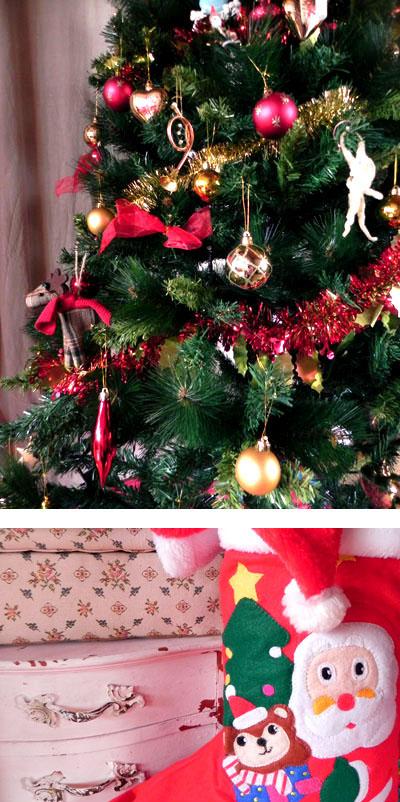 クリスマスツリーUP!