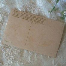 他の写真2: C.Kleinサイン入り、ポストカード