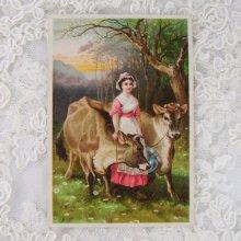 他の写真1: トレードカード