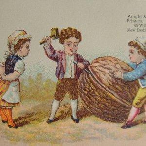 画像3: トレードカード 小人のくるみ割り