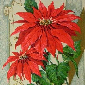 画像1: アンティークカード、クリスマス