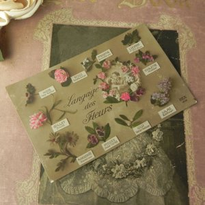 画像4: アンティークカード、花言葉