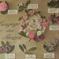 アンティークカード、花言葉