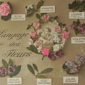 画像1: アンティークカード、花言葉