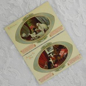 画像4: 猫ちゃんポストカード2枚セット