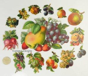 画像2: 1800年代、ヴィクトリアン・クロモス【フルーツB】14枚