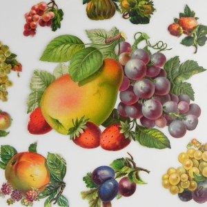 画像1: 1800年代、ヴィクトリアン・クロモス【フルーツA】10枚