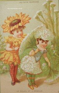 フランス、ボン・マルシェカード ひまわりと散形花序