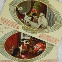 他の写真1: 猫ちゃんポストカード2枚セット