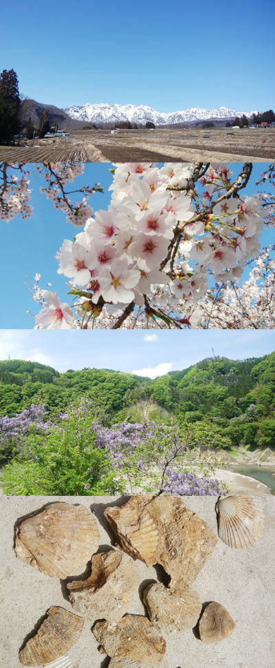 Spring in Shinshu